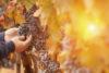 Lugares increíbles en Italia en busca de los colores del otoño